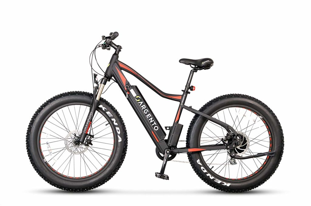 fat bike elettrica